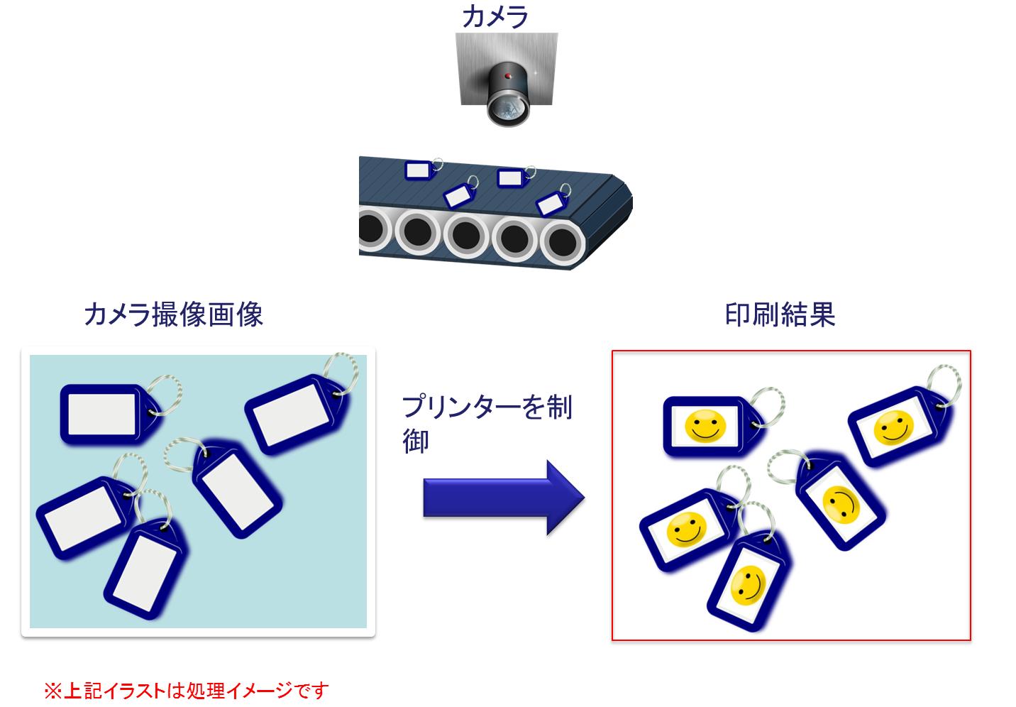 image_check02